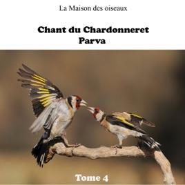 ROYAL TÉLÉCHARGER CHANT GRATUITEMENT CHARDONNERET ALGERIEN