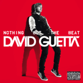 Nothing But The Beat-David Guetta