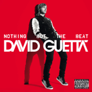 Nothing But the Beat - David Guetta - David Guetta