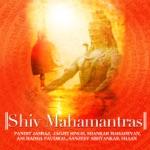 Shiv Gayatri thumbnail