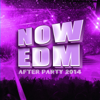 Now EDM After Party 2014 - Various Artists