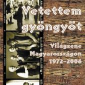 Vetettem Gyöngyöt (Világzene Magyarországon 1972-2006)