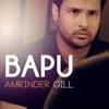 Amrinder Gill - Bapu  artwork