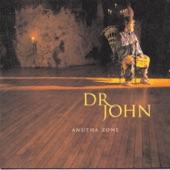 Dr. John - I Don't Wanna Know