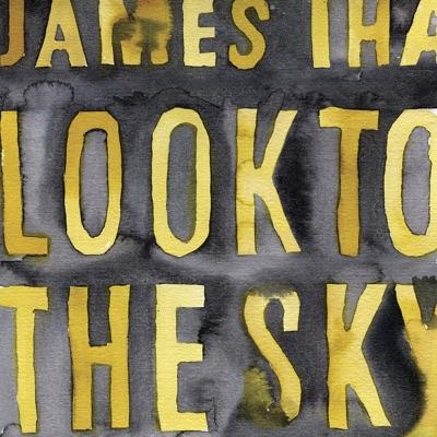 Look To the Sky (Bonus Version) - James Iha