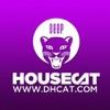 Deep House Cat