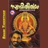 Swami Theertham