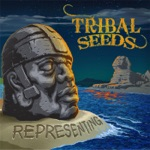 Tribal Seeds - Night & Day