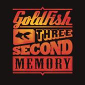 Three Second Memory