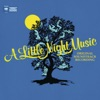 A Little Night Music Original Motion Picture Soundtrack