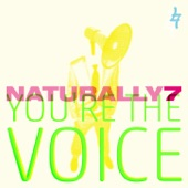 You're the Voice - Single