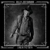 Billy Joe Shaver - The Git Go