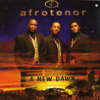 Afro Tenors - Pata Pata (feat. Oliver Mtukudzi) artwork