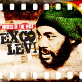 Exco Levi - Life in the Factory