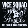 No Cause For Concern, Vice Squad