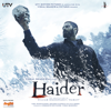 Vishal Bhardwaj - Haider (Original Motion Picture Soundtrack) artwork
