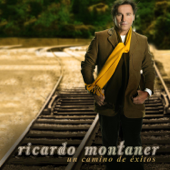 Quisiera - Ricardo Montaner