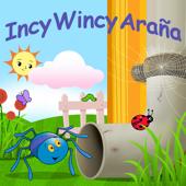 Incy Wincy Araña
