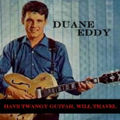 Have Twangy Guitar, Will Travel