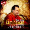Main Tenu Samjhawan & Other Hits songs