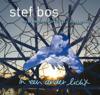 Stef Bos - In Een Ander Licht kunstwerk