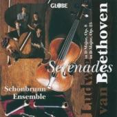Serenade for Flute, Violin and Viola in D Major, Op. 25: II. Tempo ordinario d'un minuetto artwork