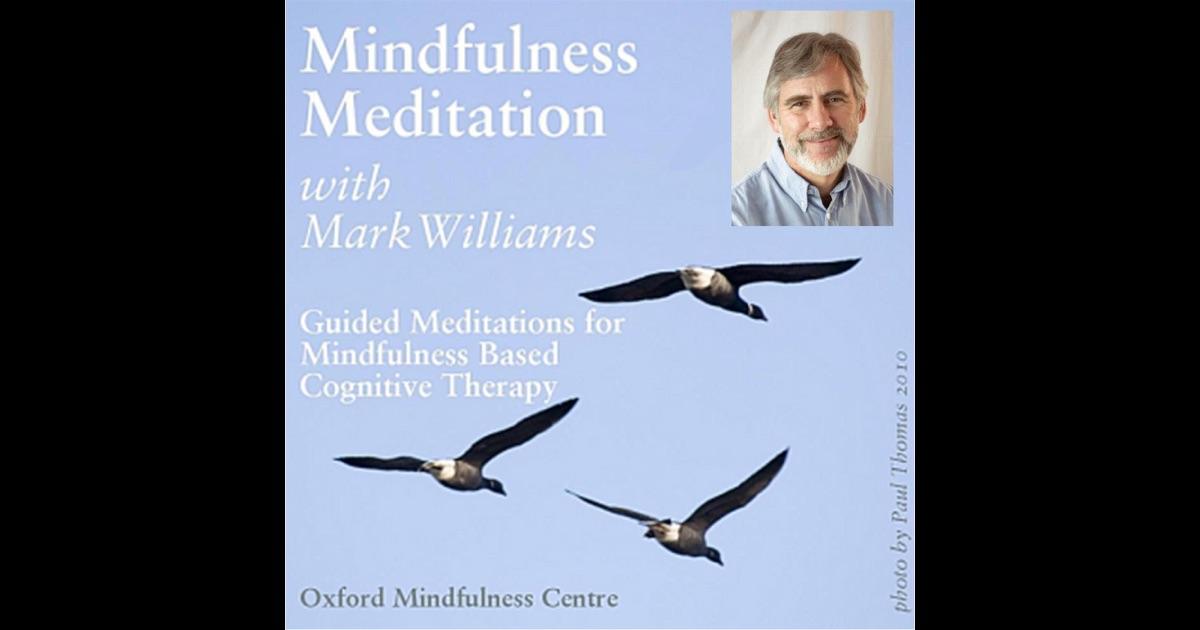 mindfulness mark williams pdf download