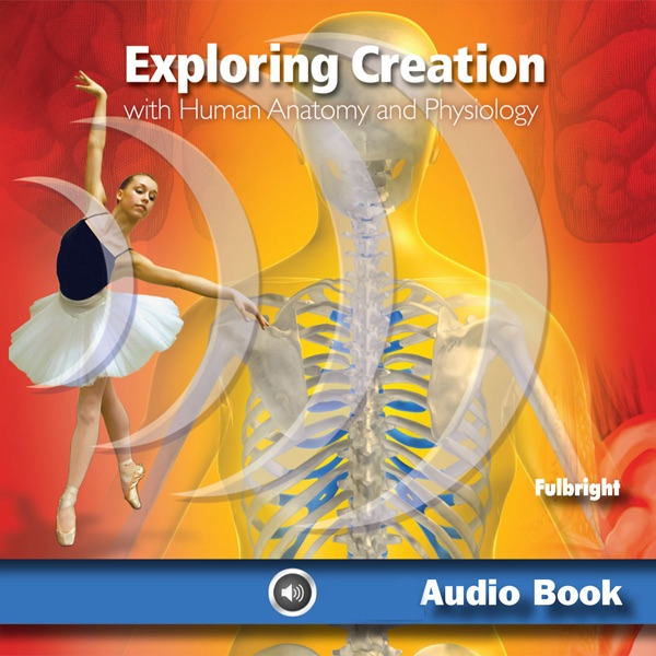 Exploring Creation with Human Anatomy and Physiology: Young Explorer ...