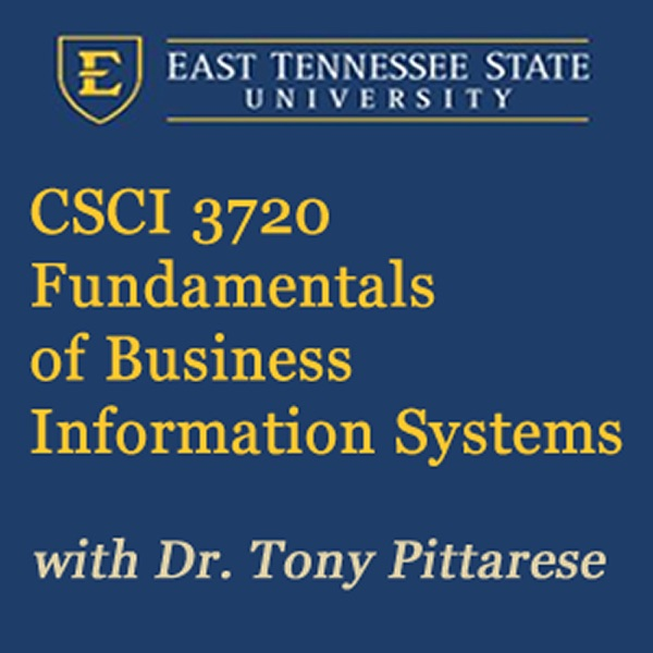 Fundamentals of Business Information Systems (Fall 2015)