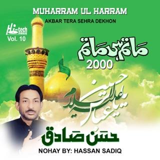 Tar Khoon Mein Hoi, Vol  8 - Muharram Nohay 1998 by Hassan Sadiq on