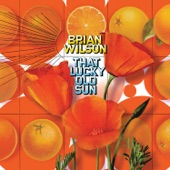 Brian Wilson - Morning Beat