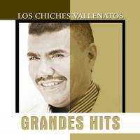 Descargar mp3  Tierra Mala - Los Chiches Vallenatos & Amin Martinez
