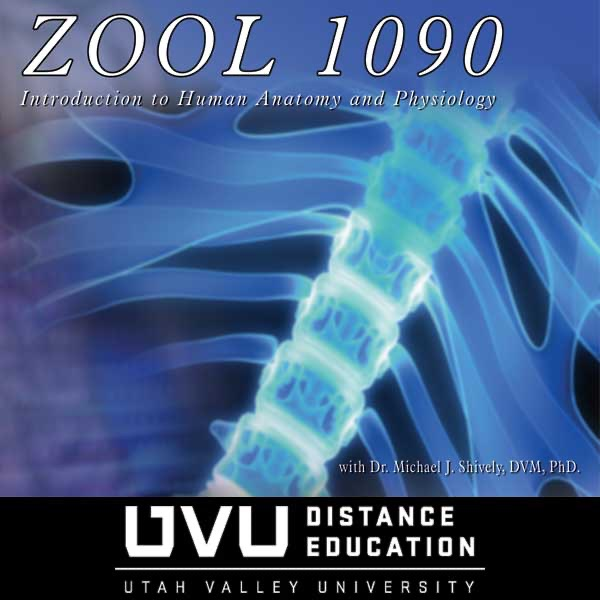 Zool 1090 Introduction To Human Anatomy And Physiology Chartable