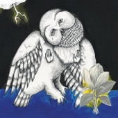 Songs: Ohia - Farewell Transmission
