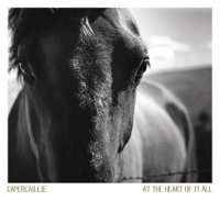At the Heart of It All by Capercaillie on Apple Music