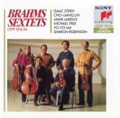 Yo-Yo Ma - String Sextet No. 1 in B-Flat Major, Op. 18: I. Allegro ma non troppo