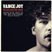 Vance Joy - Mess Is Mine