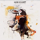 Peter Doherty - Lady Don't Fall Backwards