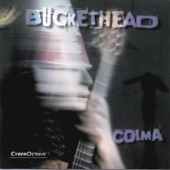 Buckethead - Big Sur Moon