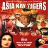 Asia Kay Tigers (Pakistani Film Soundtrack)