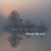 I'll Meet You Where You Are / Home To You - Salt Of The Sound