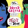 Shot Me Down (feat. Skylar Grey) - David Guetta