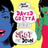 Shot Me Down feat Skylar Grey - David Guetta mp3