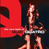 Suzi Quatro & Chris Norman - Stumblin' In обложка