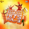Bhangra Smash Hits Volume 3 - Various Artists