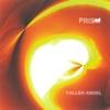 Fallen Angel (2016 Remaster Deluxe Edition) - SUSUMU YOKOTA a.k.a. PRISM