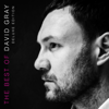 The Best of David Gray (Deluxe Edition) - David Gray