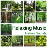 Relaxing Music – New Age Music for Yoga Meditation, Reiki, Ayurveda, Deep Sleep, Study, Reading, Concentration, Learning, Massage and Spa, Fall Asleep - New Age - New Age