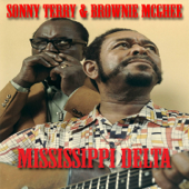 Mississippi Delta (feat. Sonny Terry & Brownie McGee)