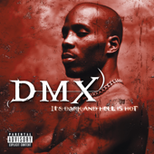 I Can Feel It - DMX